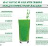 drinking-kale